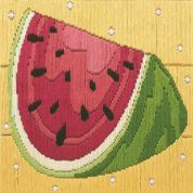 Anchor Long Stitch Kit Watermelon