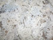 Bernice Corded Embroidered Lace on Open Tulle Couture Bridal Lace Fabric  Ivory