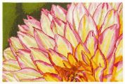 DMC Variegated Dahlia Counted Cross Stitch Kit