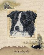 DMC The Border Collie Counted Cross Stitch Kit