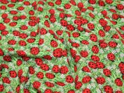 Timeless Treasures Ladybirds & Flowers Quilting Fabric