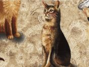 Timeless Treasures Realistic Cat Poplin Quilting Fabric