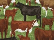 Timeless Treasures Beef Cows Poplin Quilting Fabric