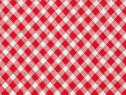 Timeless Treasures Sketch Bias Gingham Poplin Quilting Fabric