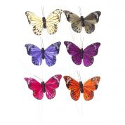 Butterfly Embellishments  Assorted