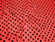 Timeless Treasures Spot the Ladybird Quilting Fabric