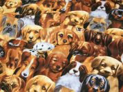 Timeless Treasures Handsome Dogs Quilting Fabric