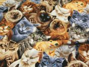 Timeless Treasures Realistic Cats Quilting Fabric