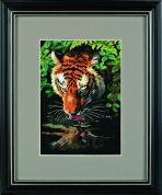 Dimensions Counted Cross Stitch Petite Kit Tiger Reflection