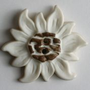 Dill Flower Plastic Buttons  Brown