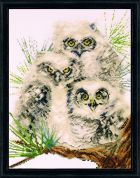 Design Works Counted Cross Stitch Kit Owl Trio
