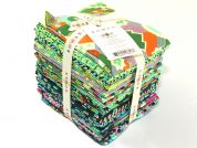 Free Spirit Amy Butler Glow Fat Quarter Collection