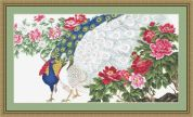 Luca-S Counted Petit Point Cross Stitch Kit Peacock & Flowers
