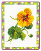 RIOLIS Counted Cross Stitch Kit Nasturtium