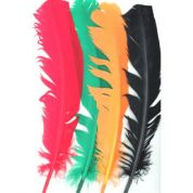 Neon Craft Feathers  Assorted Colours per pack HC1019-24