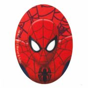Marvel Comics Spiderman Iron On Motif