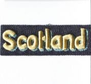 Scotlan Patch Motif  Multicoloured