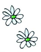 Craft Factory Iron or Sew On Fabric Motif Applique White Sunflower