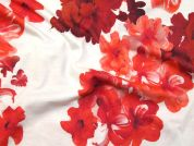 Floral Print Cotton Jersey Dress Fabric  Red