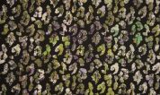 Lurex Jacquard Fabric  Multicoloured