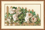 RIOLIS Counted Cross Stitch Kit White Roses on Fence