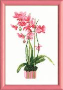 RIOLIS Counted Cross Stitch Kit Pink Orchid