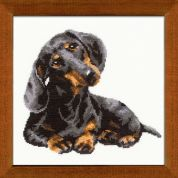 RIOLIS Counted Cross Stitch Kit Daschound