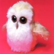Minicraft Mini Soft Toy Making Kit Baby Owl