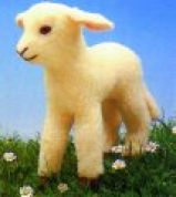 Minicraft Cuddly Soft Toy Making Kit Lamb