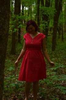 Kwik Sew 3854 and a Little Red Dress
