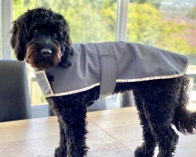 Soft Shell Dog Coat